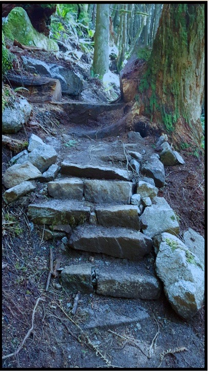 Rock steps on steep grade